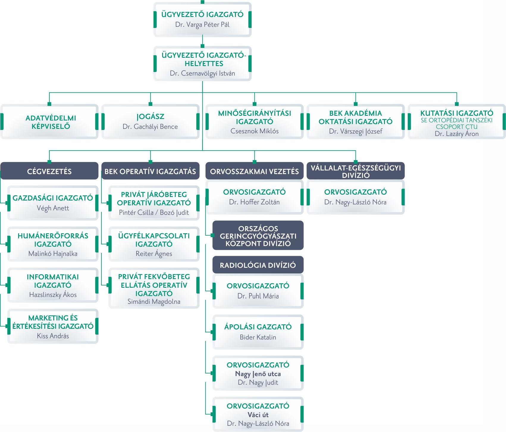 vezetőség szervezeti ábra