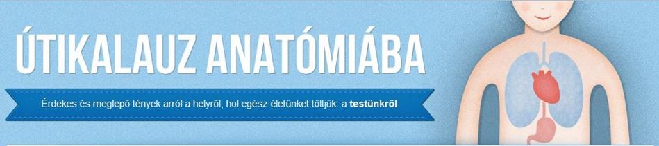 utikalauz-blog