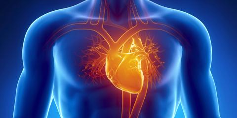 cardology