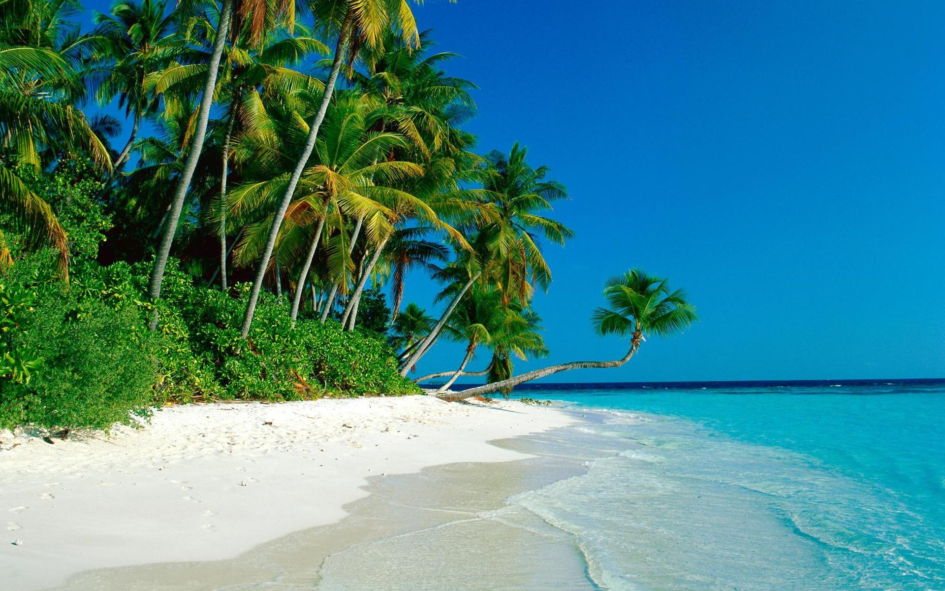 tropical-beach-new-hd-wallpapers-of-high-resolution-free-cook-islands-images